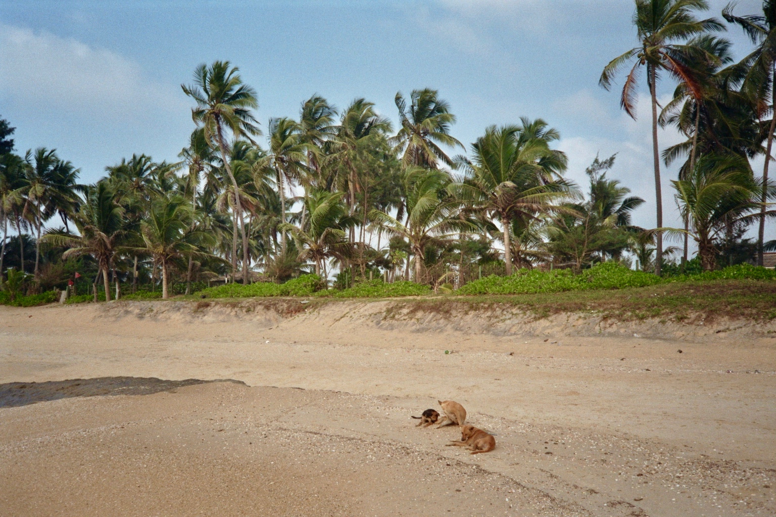 Sri Lanka analog - 195