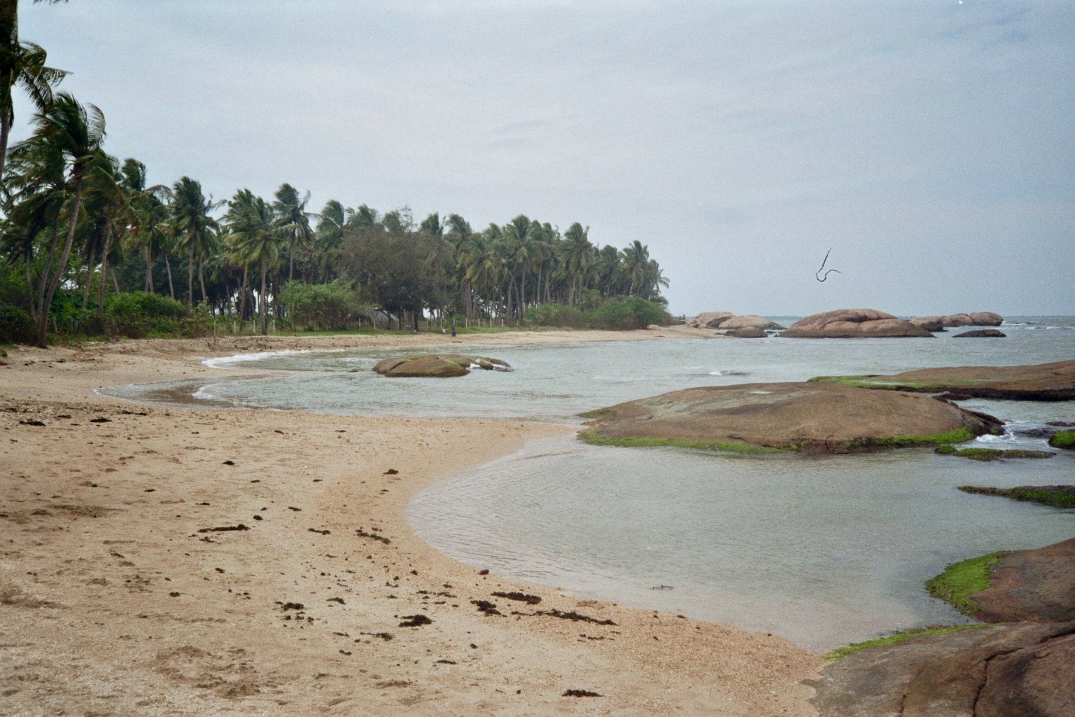 Sri Lanka analog - 21