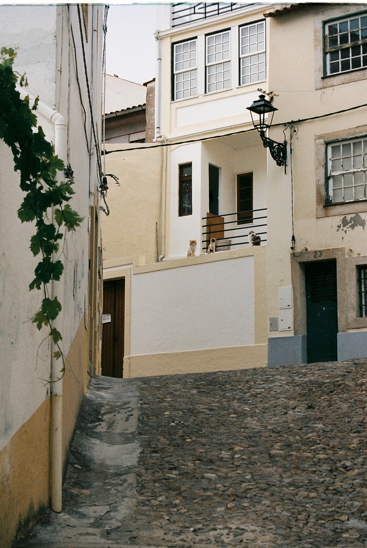 Coimbra 08-2019 - 3 of 62