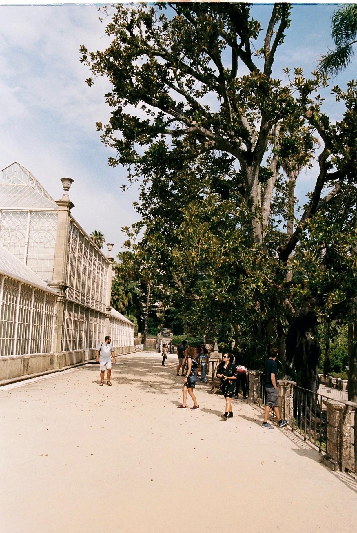 Coimbra 08-2019 - 44 of 62