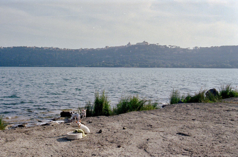 Lago Bracciano 07-2019 - 57 of 66