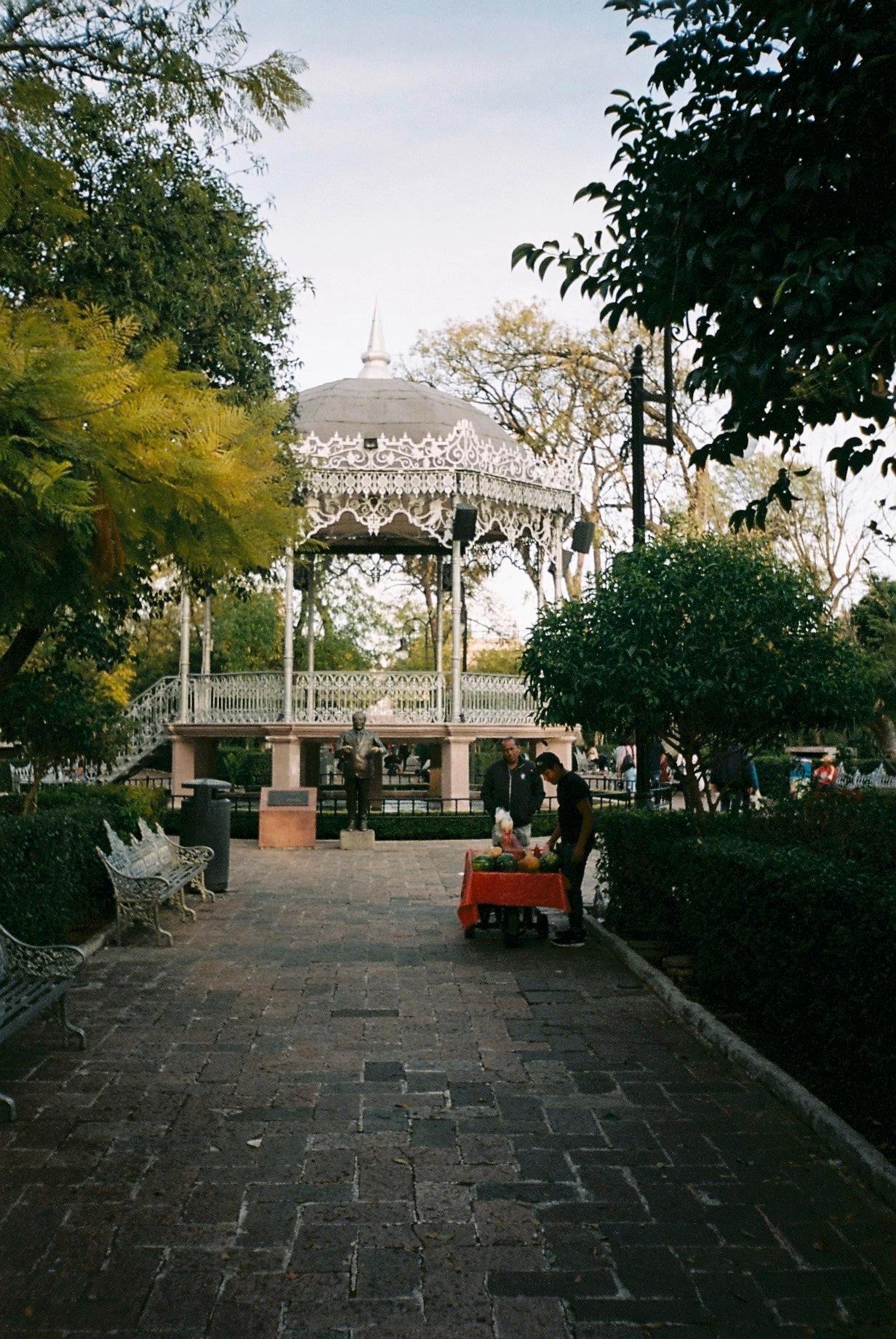 Aguascalientes 01-2020 - 5 of 24