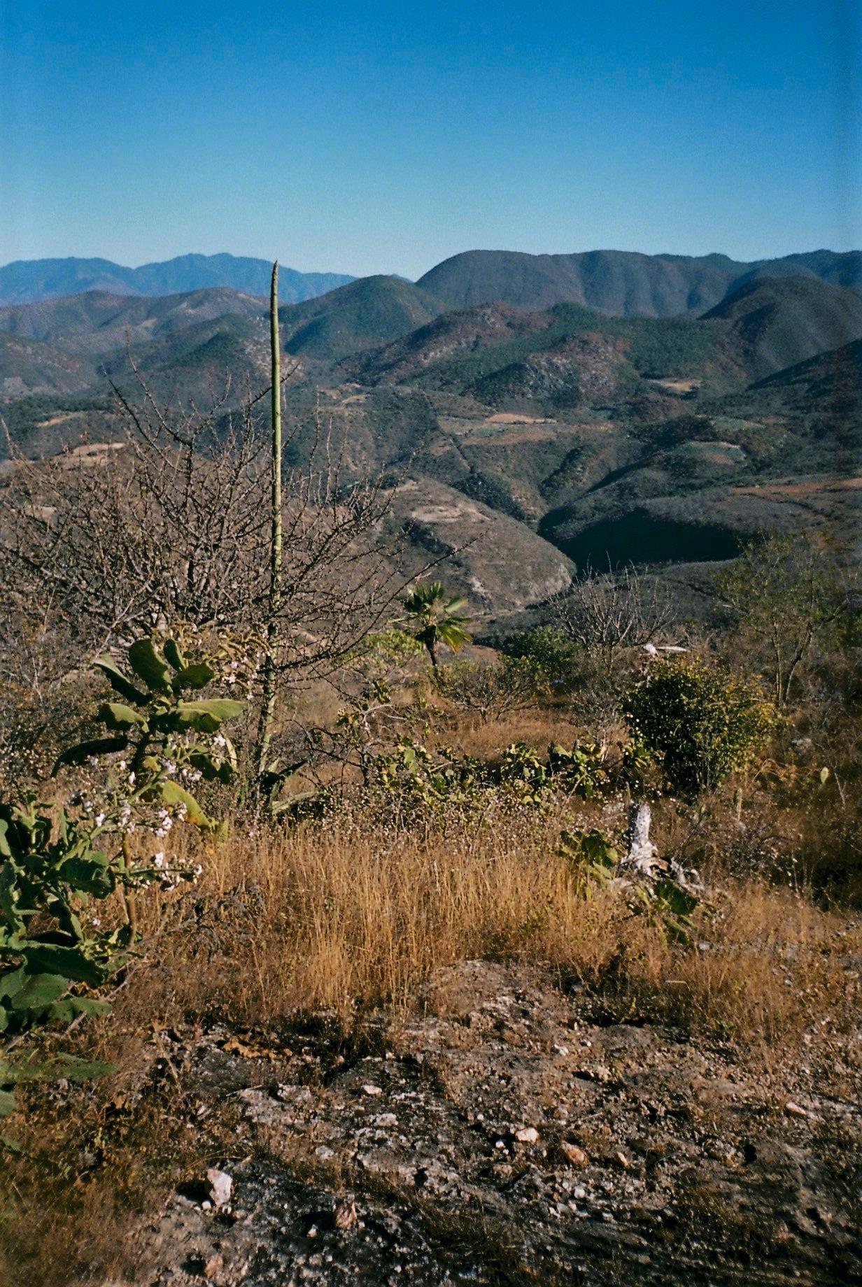 Hierve El Agua 01-2020 - 3 of 53