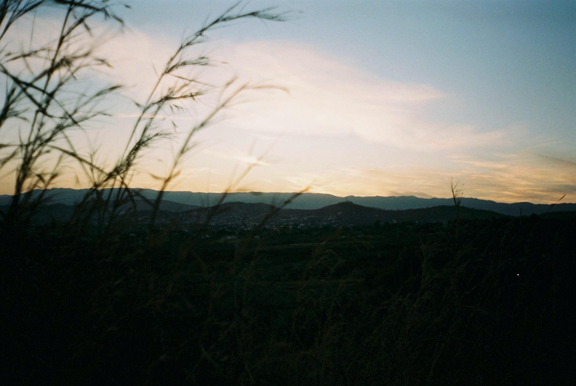 Oaxaca 01-2020 - 12 of 37