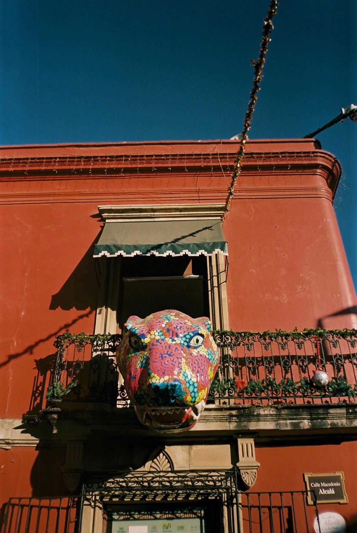 Oaxaca 01-2020 - 4 of 37